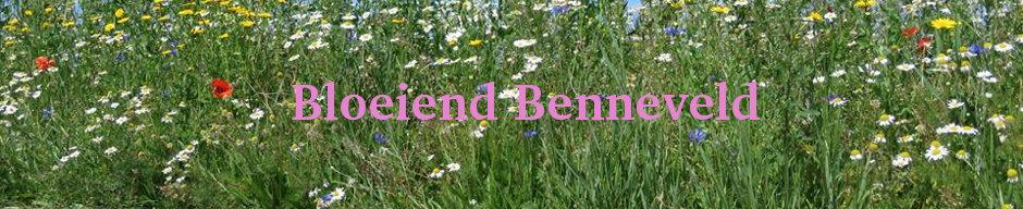 Benneveld